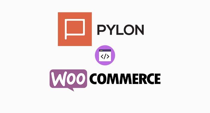 Pylon-woo